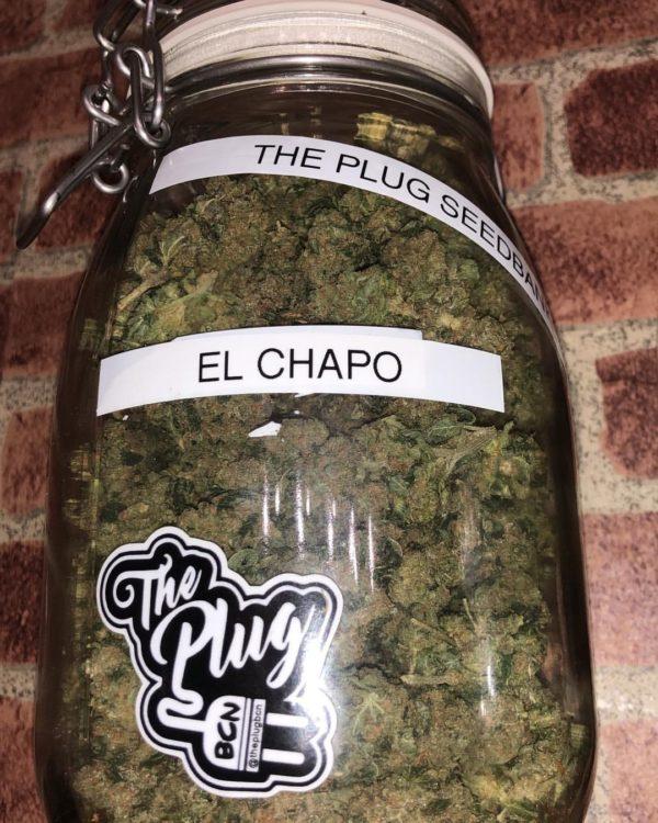 El Chapo OG