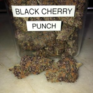 Black Cherry Punch
