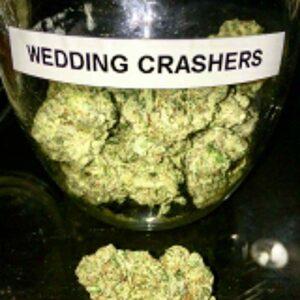 wedding crasher strain